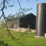 One of the barns