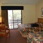 Room in Maswik North