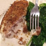 Crusted red snapper