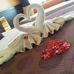 Greeted by swans made of towels
