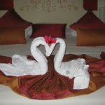 Our towel art from our maid