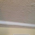 Bubbling ceiling paint