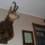 Hard Antler Bar & Restaurant