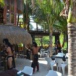 Apresentação dos Mayas