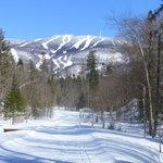 piste de ski de fond derriére le Gite