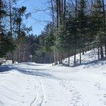piste de ski de fond derrière la maison
