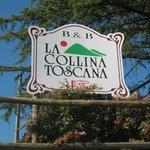 La Collina Toscana Foto