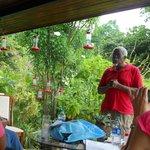 on porch hummingbird feeders all around