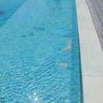 Открытие отеля в этом году, но плитка в бассейне уже вся отвалилась
