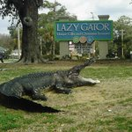 Lazy Gator Gifts Murrells Inlet SC