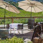 patio dining overlooking russian river vineyards