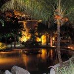 Côté jardin la nuit
