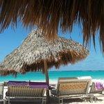 Sun or Shade at the Beach