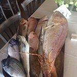 Το πακέτο εινε για να δείτε το μέγεθος των ψαριών !!