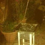 BBQ im schönen gemütlichen Garten