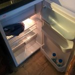Mini fridge is big enough