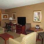 Suite Living Guest Room
