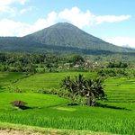 Mount Adeng and rice terraces from Jatiluwih