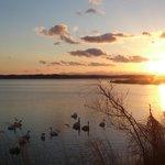 伊豆沼東岸から眺める夕日