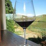 planeta wine in sicily