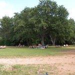 Пикник на острове