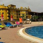 Thhe pool