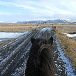 The view from horseback