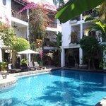 pool and plants