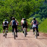 The Lodge has mountain bikes that can be hired to explore some trails.