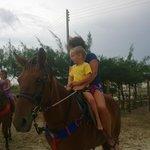 Ausflug mit den Pferden