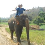 Riding the elephants bareback
