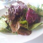 Der Salat.