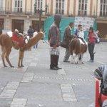 Plaza Bolívar un dìa domingo