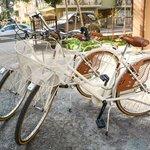 biciclette B&B casa fuori casa, Senigallia