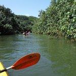 Kayak up the river