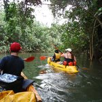Kayak out of the jungle