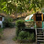 Chestnut Tree Yurt and bathroom - Yurt Holiday Portugal