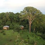 View of cabins from the birding tower