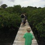 Entering Tranquilo Bay through the mangroves