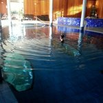 The pool complete with underwater display areas