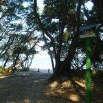 Raymond Island
