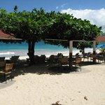 Beach and Flamboyant beach bar area
