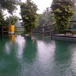 kolam renang dengan pemandangan sawah yang sangat bagus