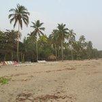En dejlig strand