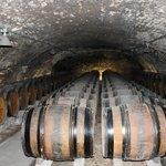 Wine Caves