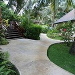 Path to our bungalow