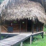 Trogon cabin
