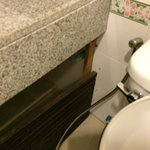 broken cabinet in the bathroom