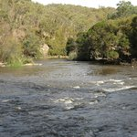 The Yarra River along the bush walks from the cottages