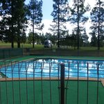 Good sized outdoor pool & picnic area